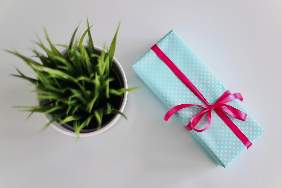 regals conscients